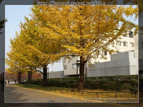 E510_20091110_016.jpg