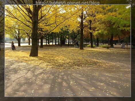 E510_20091110_037.jpg