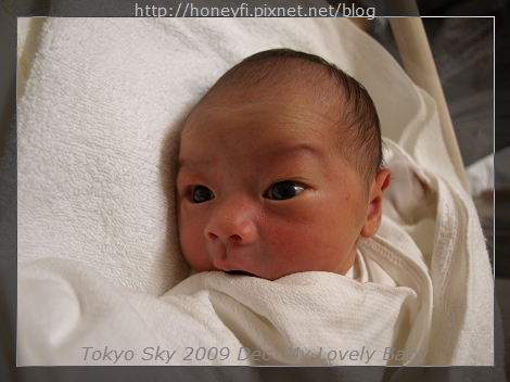 E510_20091126_145.jpg