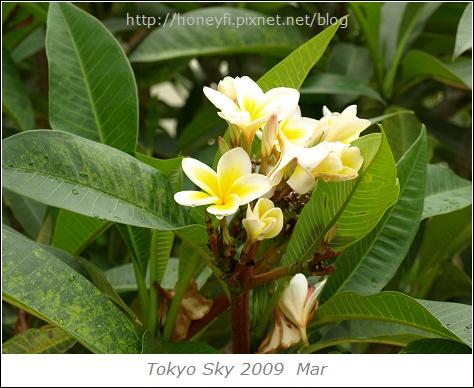 E510_20090615_060.jpg