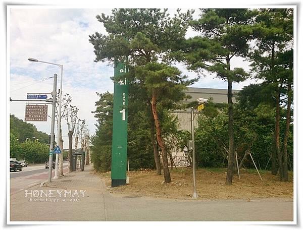 DSC_9274藝術村.jpg