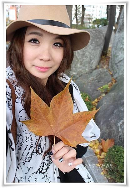 IMG_8277韓國慶熙大學賞楓.JPG