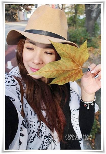 IMG_8281韓國慶熙大學賞楓.JPG