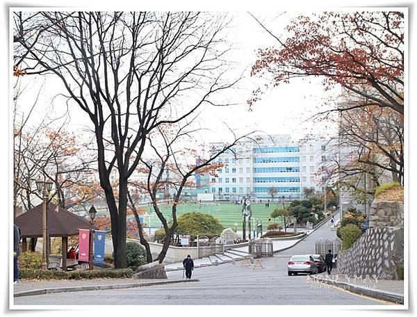 IMG_8310韓國慶熙大學賞楓.JPG