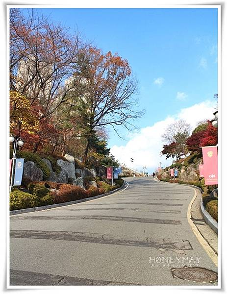IMG_8446韓國慶熙大學賞楓.JPG