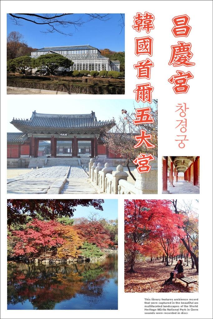 20141118 昌慶宮.jpg