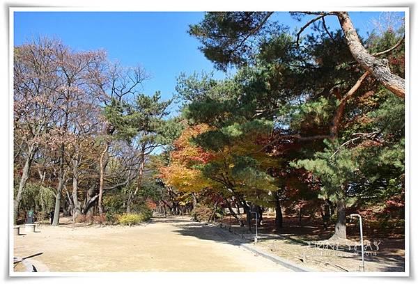 IMG_8683昌慶宮.JPG