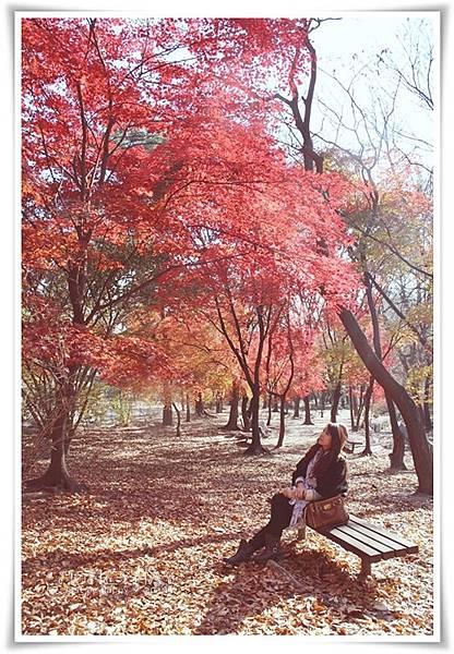 IMG_8723昌慶宮.JPG