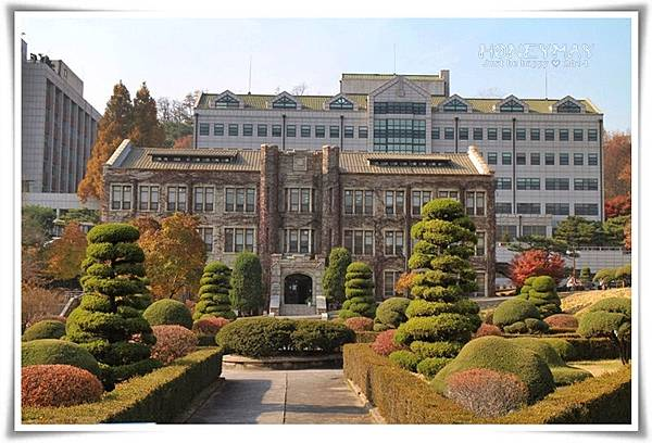 IMG_9282延世大學.JPG