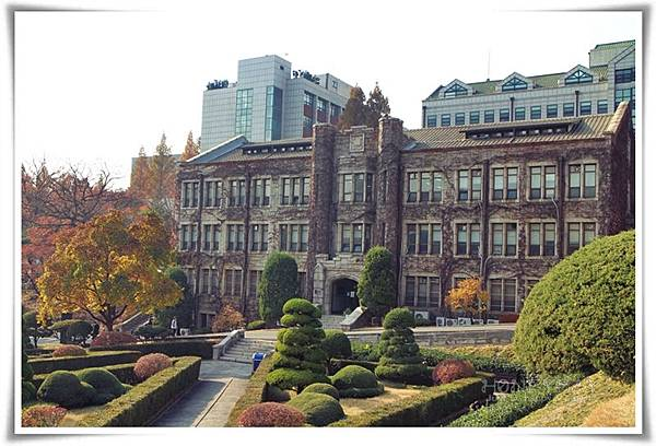 IMG_9302延世大學.JPG