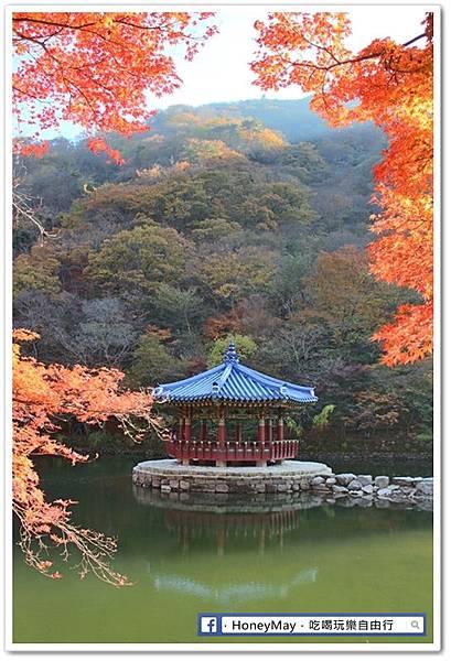 20181102 內藏山公園 (11).JPG