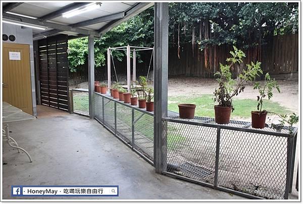 IMG_8685To House八里兔子.JPG