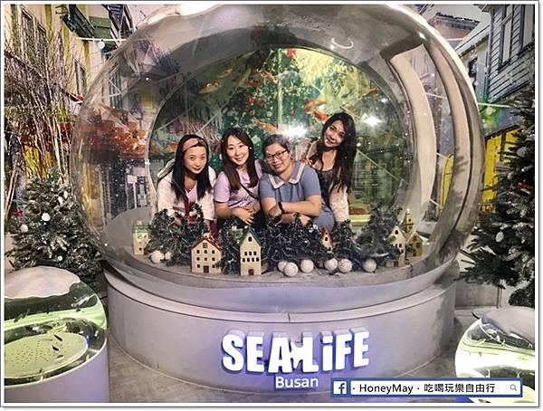 20190523 (1)釜山水族館sea life.jpg