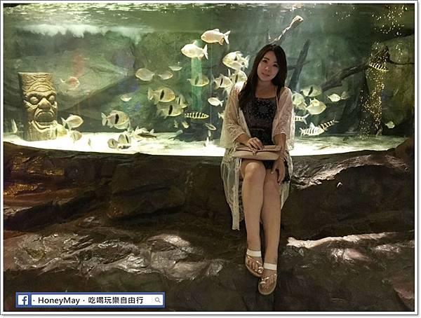 20190523 (31)釜山水族館sea life.jpg