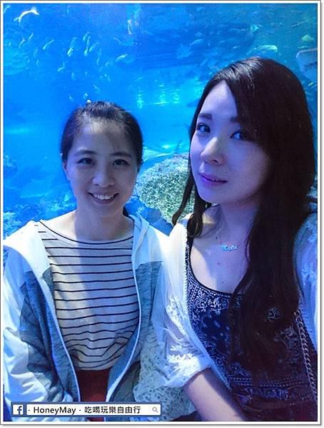 DSC_0887釜山水族館sea life.JPG