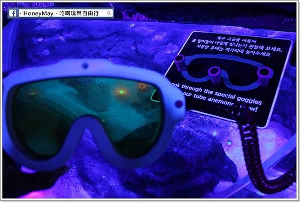 IMG_8176釜山水族館sea life.JPG