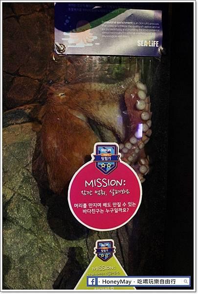 IMG_8202釜山水族館sea life.JPG