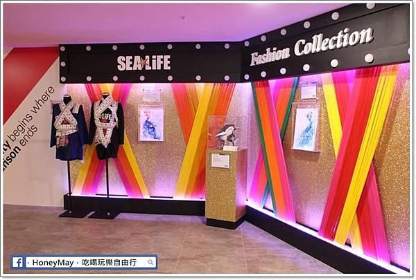 IMG_8220釜山水族館sea life.JPG