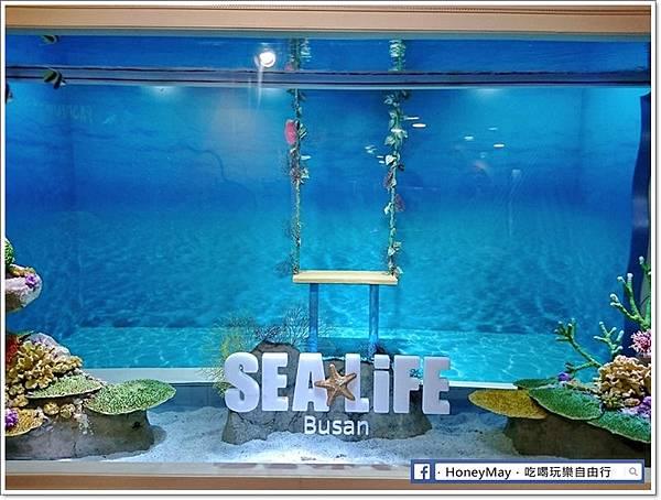 WuTa_2019-05-23_12-58-34釜山水族館sea life.jpg