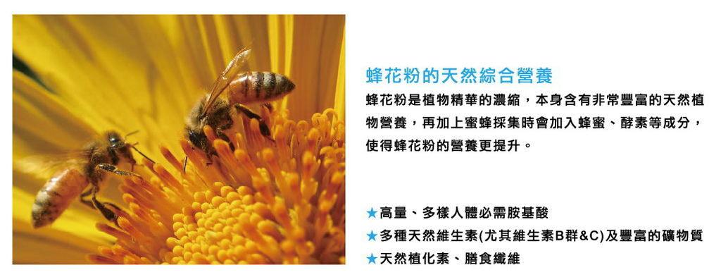 營養師線上-蜂花粉篇,外食族均衡營養的小幫手