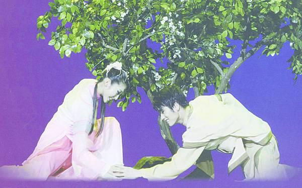 9_栽下訂親樹