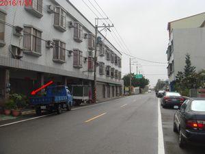 台南七股樹林2.jpg