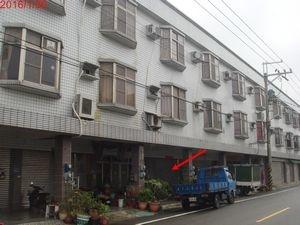 台南七股樹林1.jpg