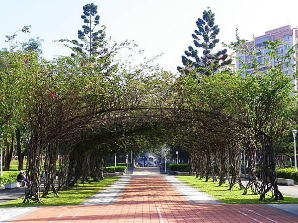 角膜塑型片 台北-榮星花園.jpg