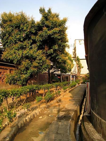 張廖家廟6