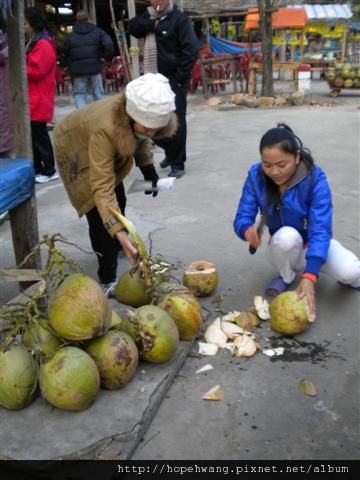2011011601招待椰子汁鳳梨攤 (1) (小型).JPG