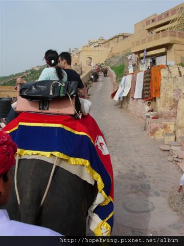 印度 107717琥珀堡 (小型)
