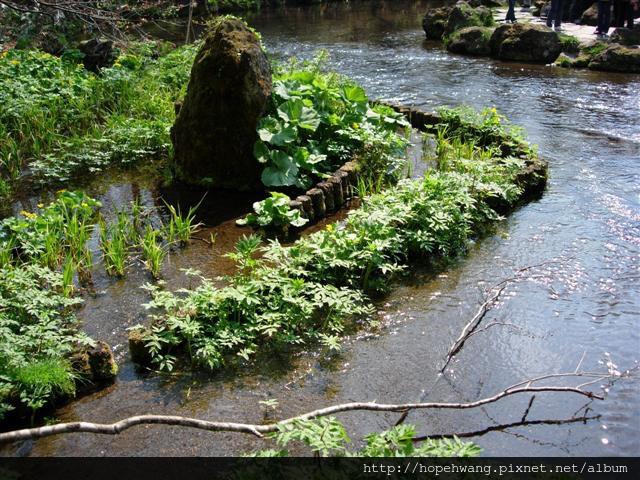 080425-4京極湧水公園pay (28) (小型).jpg