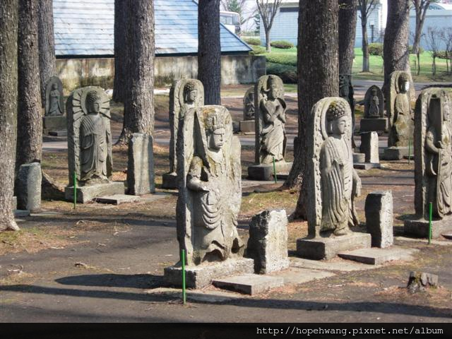 080425-4京極湧水公園pay (38) (小型).jpg