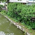 14062305太宰府天滿宮 (4) (小型).JPG