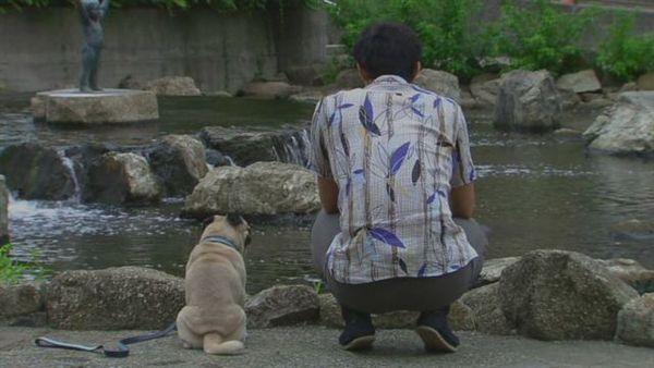 人犬與自然融為一體