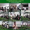 2008.08.29-02-蘭花栽培實務觀摩-秀文蘭園-楊文賓先生.jpg