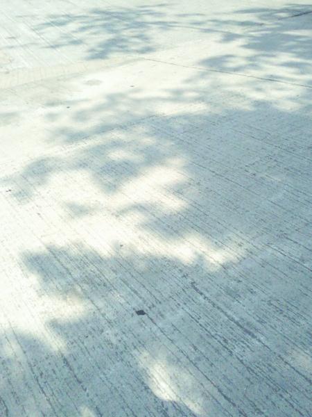 024-100424.jpg