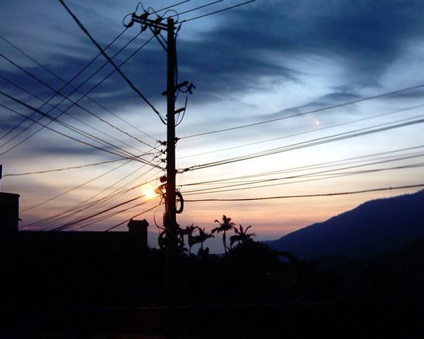 世界樹(陽明山山路)(使用通常電池的簡陋傻瓜相機拍攝).jpg