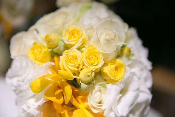 白黃色.jpg