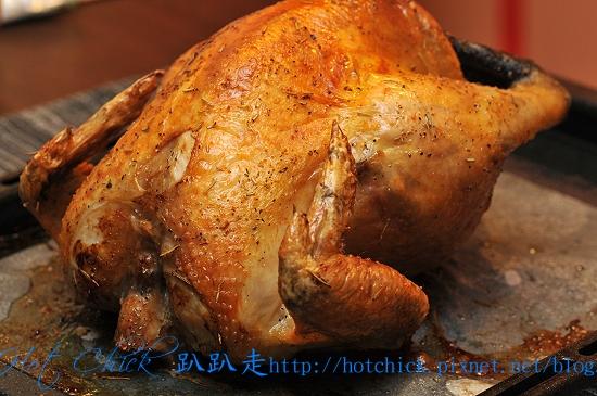 chick01.jpg