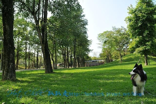 park01.jpg