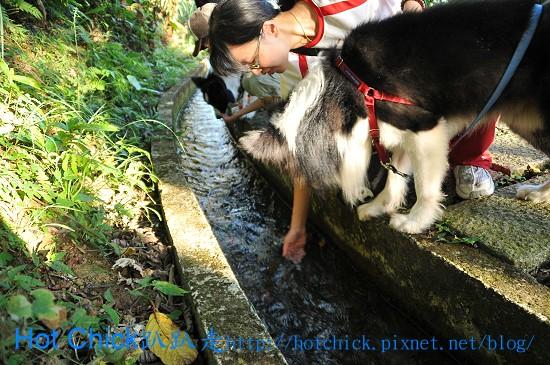water05.jpg