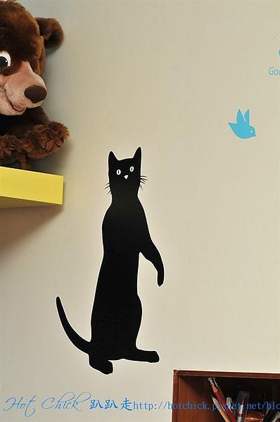 cat09.jpg