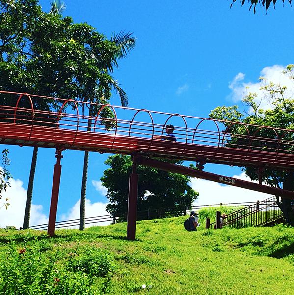 石垣島4.png
