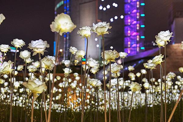韓國夜市特輯2.png
