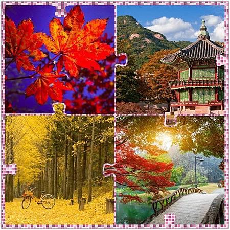 韓國首爾賞楓