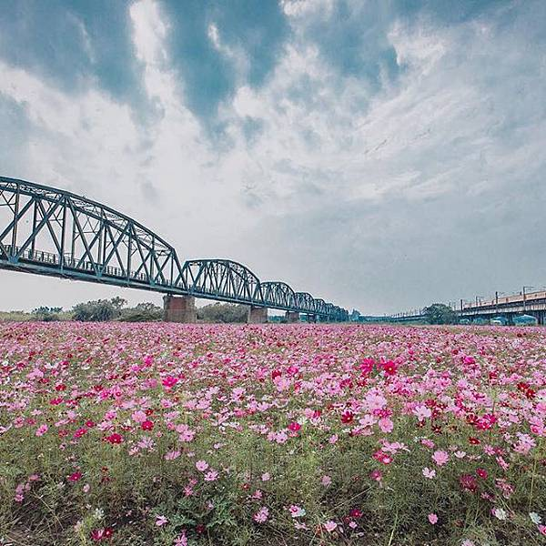 高屏舊鐵橋_03.jpg