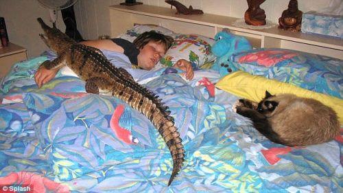 croc-family-2.jpg