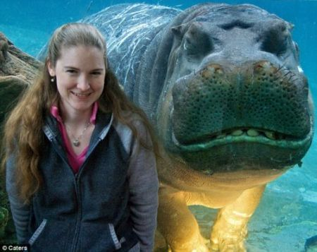 happy-hippo-2.jpg