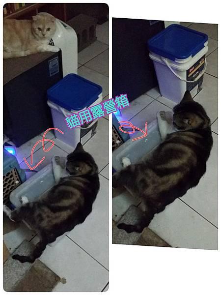 2016-12-12-12-11-55_deco.jpg